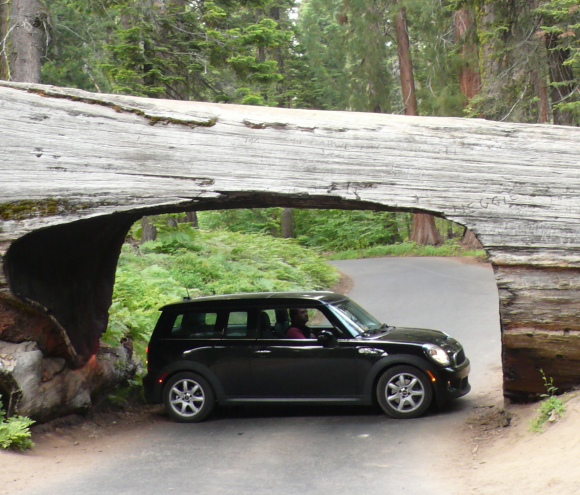 Mini Clubman in a Sequoia